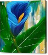 Alone In Blue- Calla Lily Paintings Acrylic Print