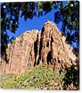 Along Emeral Pools Trail - Zion Acrylic Print