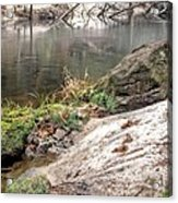 Along The Black Water River Acrylic Print