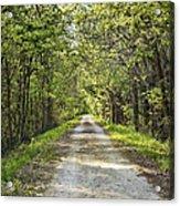 Along The Katy Trail Acrylic Print