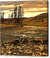 Along The Larmar River Acrylic Print