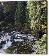 Along The River Bank Acrylic Print