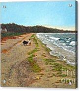Along The Shore In Hyde Hole Beach Rhode Island Acrylic Print