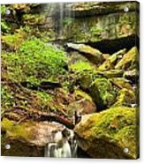 Alpha Falls Cascades Acrylic Print