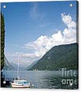 Alpine Lake With A Cypress Tree Acrylic Print