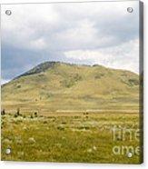 Alpine Mountain  Acrylic Print