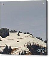 Alpine Pasture Acrylic Print