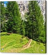 alpine path in Contrin Valley Acrylic Print