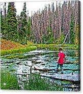 Alpine Pond On Alpine Pond Trail In Cedar Breaks National Monument-utah Acrylic Print