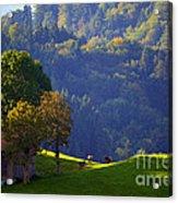 Alpine Summer Scene In Switzerland Acrylic Print