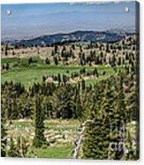 Alpine View Acrylic Print