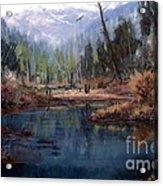 Alpine Wonder Acrylic Print by W  Scott Fenton
