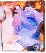 Altered States 00137_1 Acrylic Print