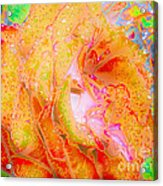Altered States 90441 Acrylic Print
