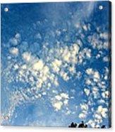 Altocumulus Clouds Acrylic Print