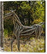 Alys Beach Driftwood Horse Acrylic Print