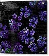 Alyssum Acrylic Print