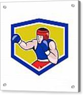 Amateur Boxer Boxing Shield Cartoon Acrylic Print by Aloysius Patrimonio
