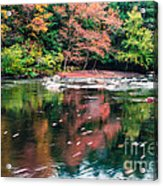 Amazing Fall Foliage Along A River In New England Acrylic Print