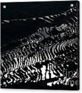 Amazing Rice Terrace In Black And White Acrylic Print