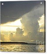 Amazon River Landscape Acrylic Print
