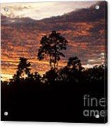 Amazon Sunset Acrylic Print