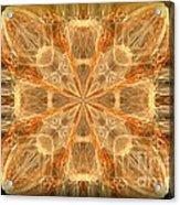 Amber Fractal Acrylic Print