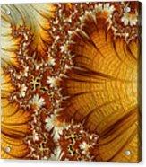 Amber  Acrylic Print by Heidi Smith