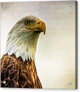 American Bald Eagle With Flag Acrylic Print by Natasha Bishop