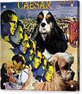 American Cocker Spaniel Art - Julius Caesar Movie Poster Acrylic Print