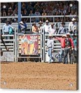 American Cowboy Bucking Rodeo Bronc Acrylic Print