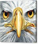 American Eagle - Bald Eagle By Betty Cummings Acrylic Print by Sharon Cummings
