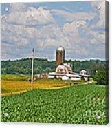 American Farmland 3 Acrylic Print