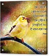 American Goldfinch Gazes Upward  - Series II  Digital Paint With Verse Acrylic Print