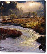 American River Confluence Acrylic Print