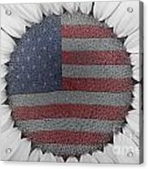 American Sunflower Power Acrylic Print