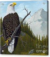 America's Pride Acrylic Print