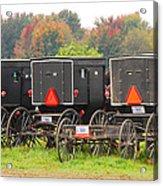 Amish Buggies 2 Acrylic Print