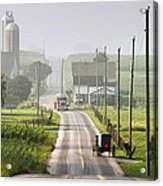 Amish Buggy Confronts The Modern World Acrylic Print