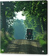Amish  Buggy Gravel Road Acrylic Print
