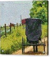 Amish Buggy In Ohio Acrylic Print