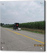 Amish Buggy With Small Back Cab Acrylic Print