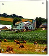Amish Farm On Laundry Day Acrylic Print