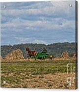 Amish Man Boy Buggy Acrylic Print