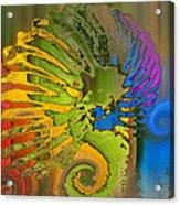 Ammonite 2 Acrylic Print by Soumya Bouchachi