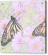 Among The Flowers  Acrylic Print