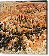 Amphitheatre At Bryce Canyon Acrylic Print