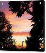 Ams 184 Acrylic Print