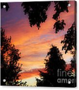 Ams 186a Acrylic Print