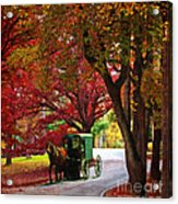 An Amish Autumn Ride Acrylic Print